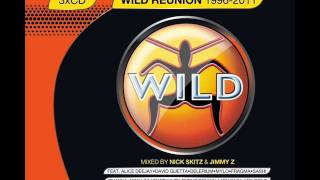 Wild Reunion 1996 To 2011 Panjabi MC ft. Jay-Z-Mundian To Bach Ke