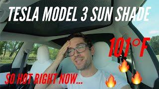 COOL IT! | Tesla Model 3 | Sun Shade Review