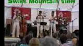 An den Lenker Jazztagen 1995 präsentierte die Loverfield Jazzband e...