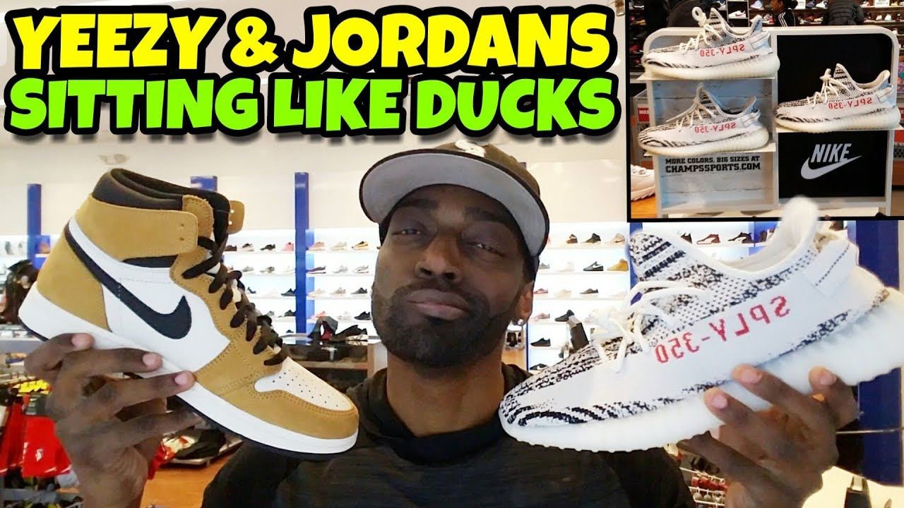 f62afec9b Yeezy Zebras   Jordan 1 ROY Are Both Sitting Like Ducks 🐤🐥😂🤣