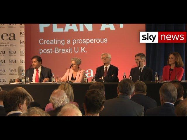 Brexiteers unveil alternative divorce plan