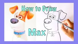 Sketching: MAX | Secret Life of Pets | How to draw