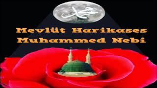 Mevlüt Harikases Muhammed Nebi