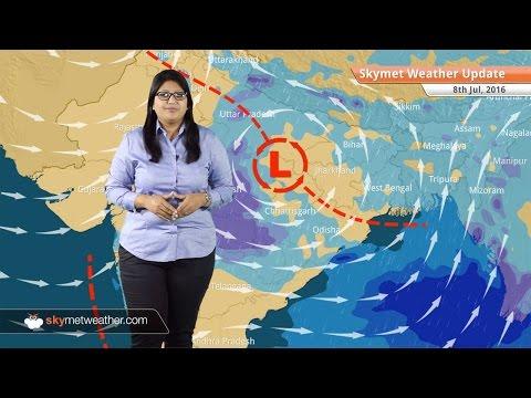 Weather Forecast for July 8: Good Monsoon rains in Madhya Pradesh, UP, Chhattisgarh, Vidarbha