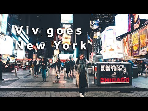 Viv goes to NYC: Crossing the street 101