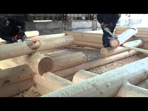 фирма ковчег пермь срубы цена