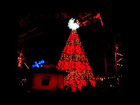 Silver Dollar City Christmas Tree - Carol Of The Bells
