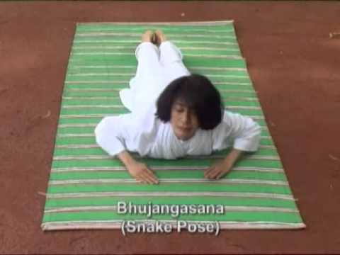 Culture of Tomorrow (The Classical Indian Yoga for Householder Education Centre, USA)