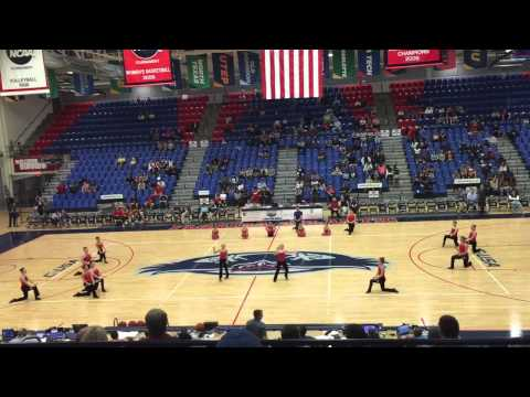 FAU Mens Basketball Game