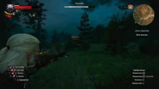 Ведьмак 3 как убить Лешачиху