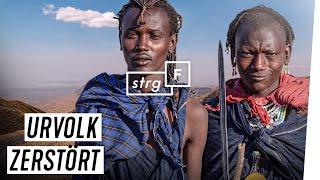 Handys, Stadtleben, Touristen: Wie erhalten Massai-Nomaden ihre Kultur? | STRG_F