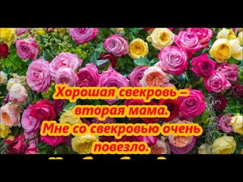 Поздравления с днем рождения  дорогой свекрови от невестки