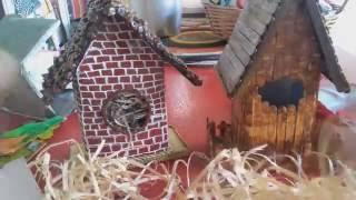 Casinha e cabana para suculentas com caixa de leite