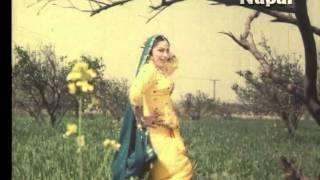 Zindagi - Ve Main Dil - Saira Naseem - Superhit Pakistani Songs
