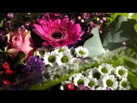 Sch ne Blumen-Musik Blumenwalzer