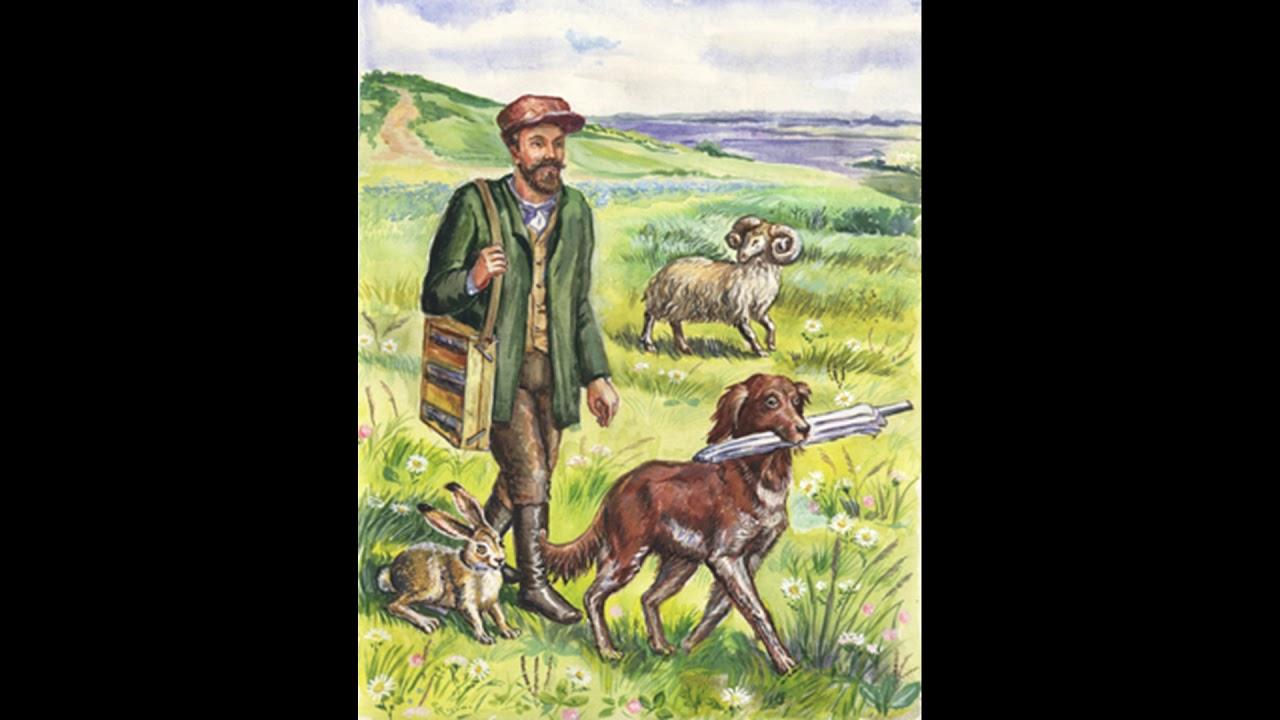 Коровин баран заяц и еж картинки