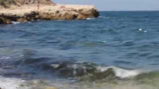 Крым, дикий пляж.(Херсонес, заповедник, 9 сентября 2014 года., 2014-09-14T12:34:25.000Z)