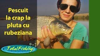 Pescuit la crap la pluta cu rubeziana