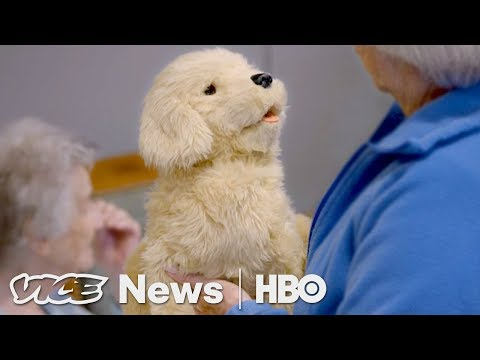 Robotic Pets Are Helping Dementia Patients (HBO) - YouTube