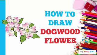 How to Draw Dogwood Flowers in a Few Easy Steps: Drawing Tutorial for Kids and Beginners