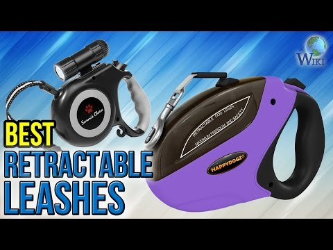 10 Best Retractable Leashes 2017