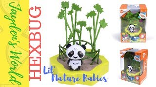 Lil nature babies toy review by Hexbug!