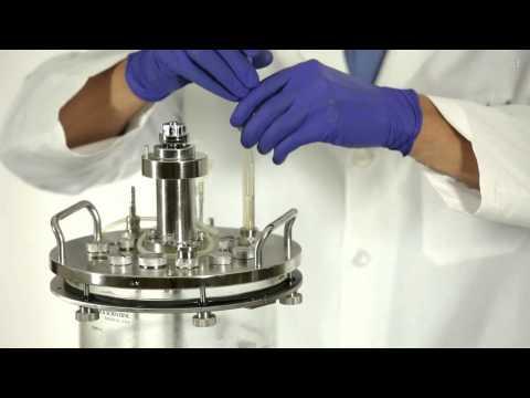 BioFlo® 310 Setup