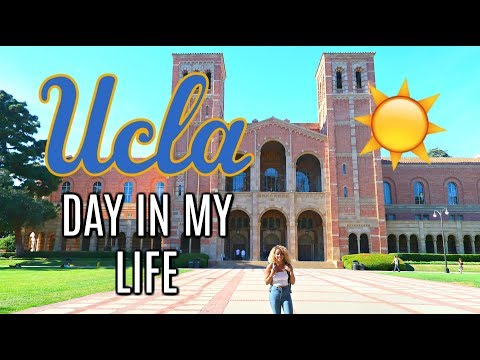 UCLA Day In The Life: Average Day as a UCLA Student 🐻📝