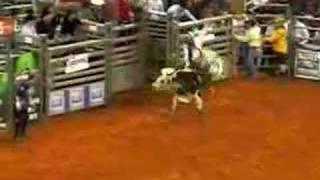 professional bull riding 2