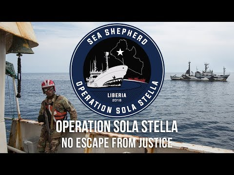 No Escape From Justice: Two More Arrests for Operation Sola Stella