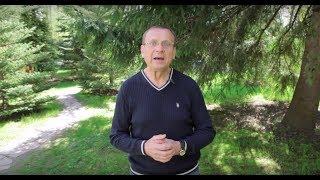 Ефимов В.А. Концептуальное движение и здоровый образ жизни