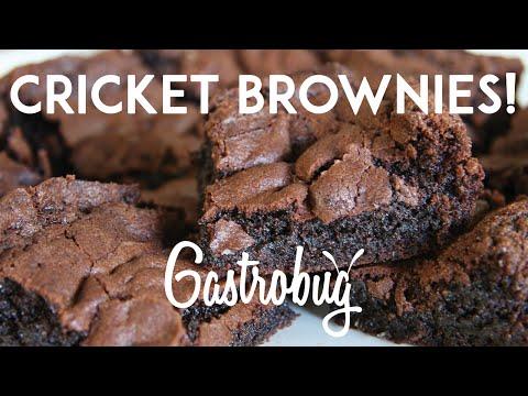 Recipe: Bug Brownies!