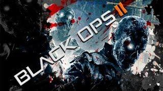 Black Ops 2 Zombies - DIE RISE - PC Gameplay