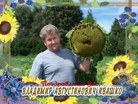 С Днем рождения вас, Владимир Августинович Ивашко!