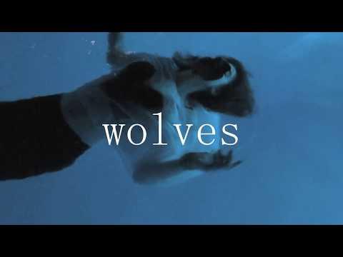 Wolves - Luísa Rossoni ( Selena gomez, marshmello cover)