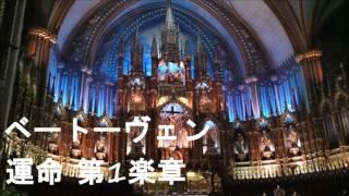 交響曲第5番 ハ短調 作品67(こうきょうきょくだい5ばん ハたんちょう ...