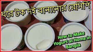 ঘরে টক দই বানানোর রেসিপি   How to Make Yogurt at Home in Bangla