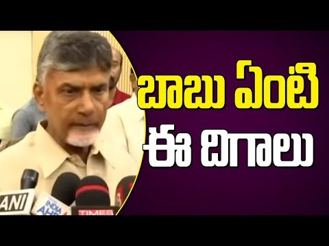 TDP Chief Chandrababu Naidu Interacts With Media After Election Results