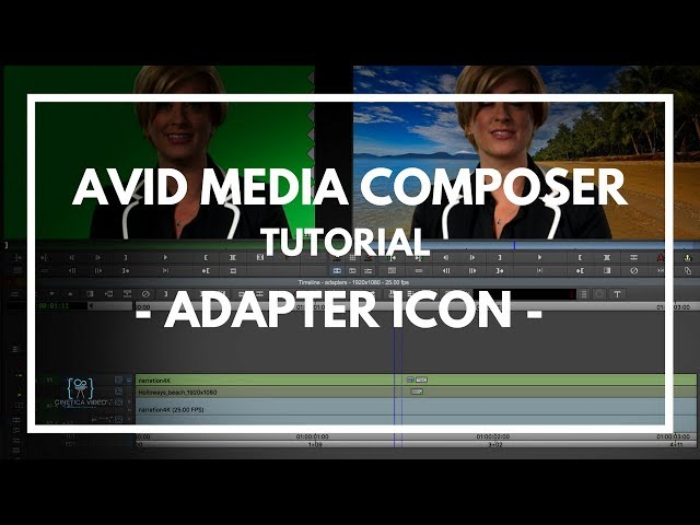 TUTORIAL #2  Media Composer - Adapter Icon -
