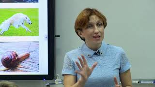 Урок химии, Коротаева А. Н., 2018