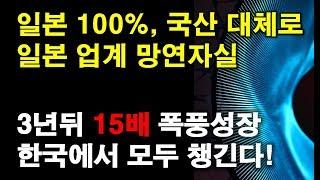 일본 100% 의존, 국산 대체로 일본 업계 망연자실