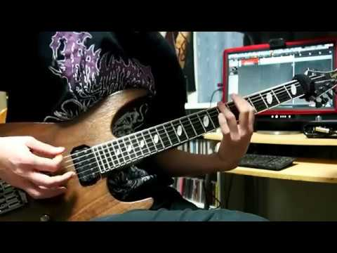 Waking The Cadaver - Blood Splattered Satisfaction(Guitar Cover)