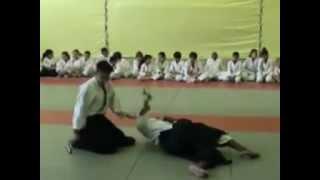 Hakim préparation au passge de grade shodan 2012.mpg
