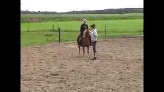 Danielle en Renate  op Vosje 24 jaar oude pony - Drentse Weg Appelscha augustus 2011 -