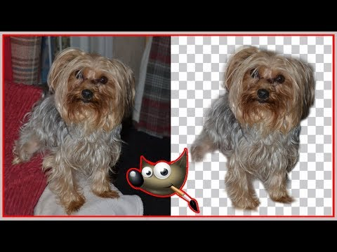 How to remove a background image using Gimp for beginners thumbnail