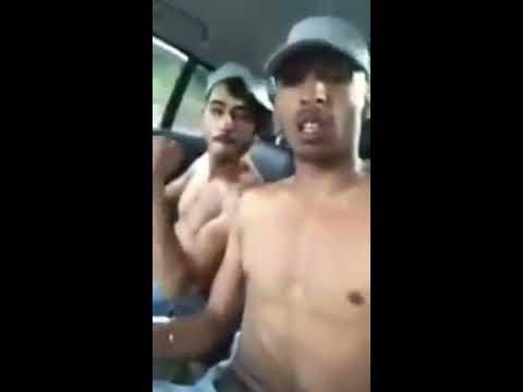 indieni penis mare