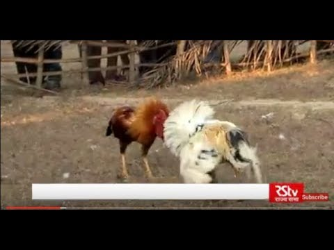 Main Bhi Bharat- Tribes of Odisha| Koya Tribes