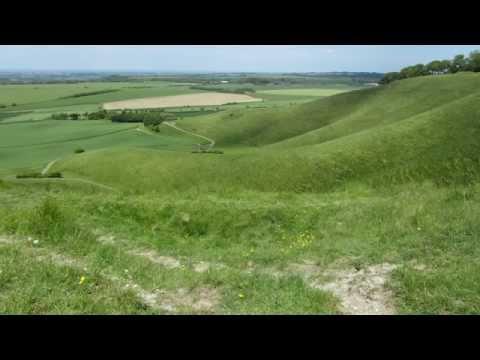 A blissfull walk up cherhill in June