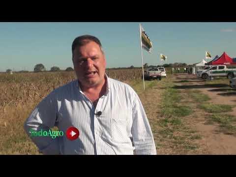 Jornada a Campo para hablar de maíz, soja y maní