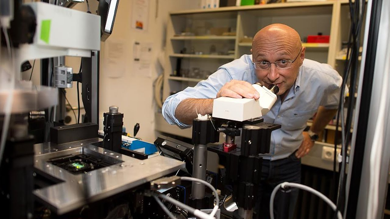 Nanoscientist Paul Weiss On Stefan Hell's Nobel-Winning Microscopy Work